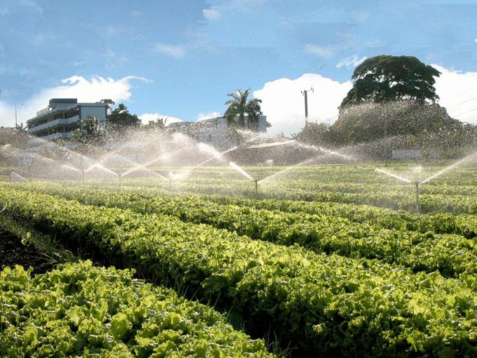 Nuevos equipos para la Agricultura Urbana y Suburbana