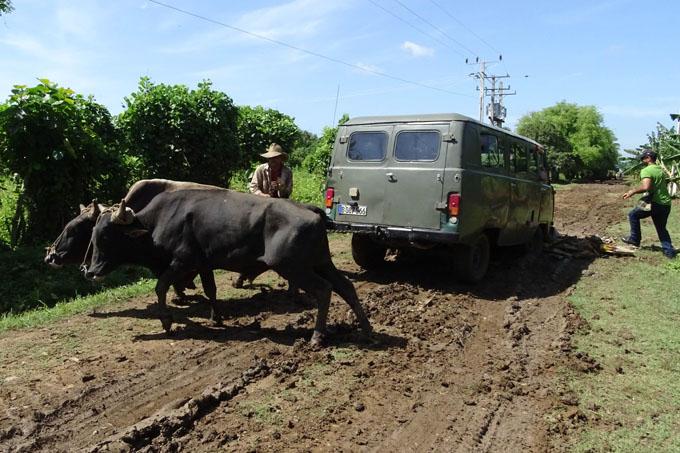 Adopta la Agricultura medidas para la recuperación