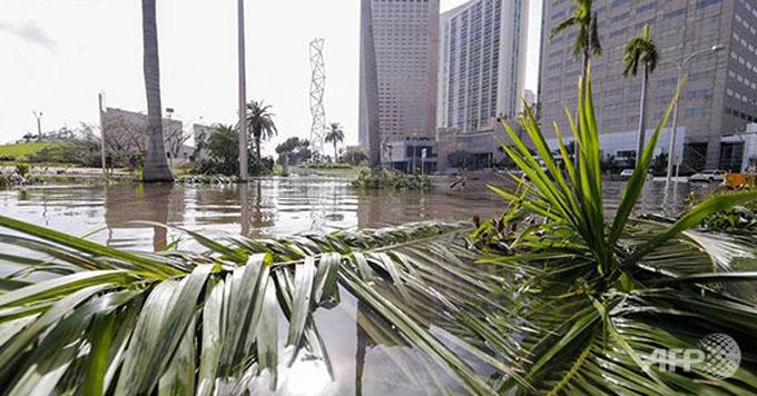 Trump parte hacia Florida para examinar daños causados por Irma (+ videos)