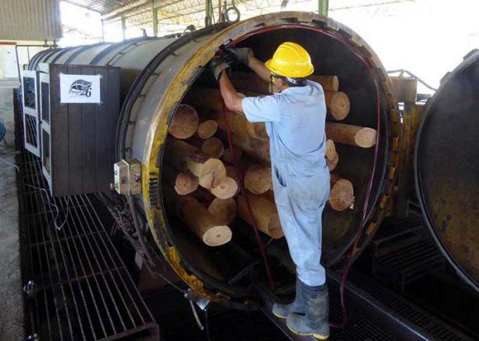 Pinar del Río refuerza la producción de postes para apoyar a los territorios afectados por Irma