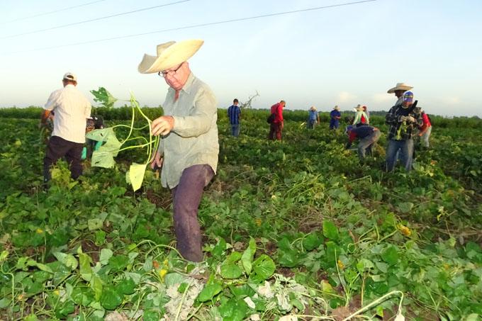 Comenzó jornada de homenaje a trabajadores agropecuarios