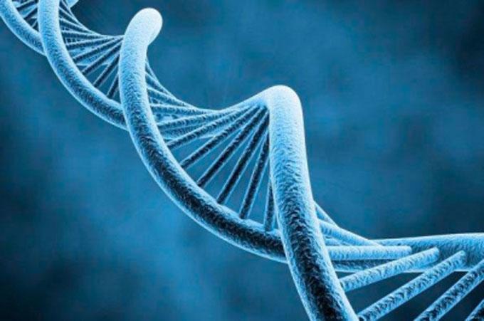 Estudio devela estrecha relación entre esquizofrenia y genética