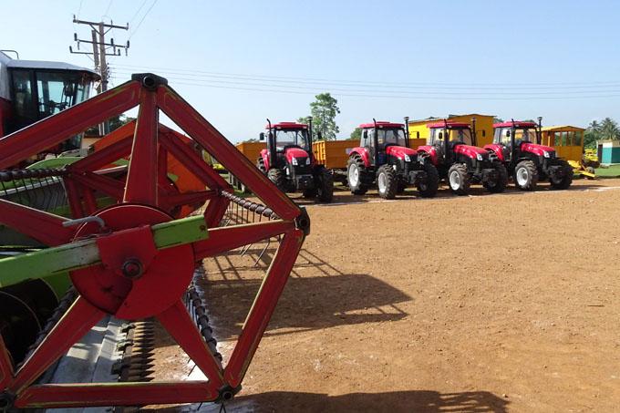 Granma excederá plan anual  en más 10 mil toneladas de arroz