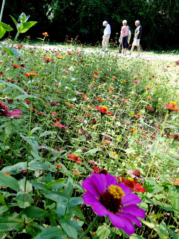La eterna edad de la primavera (+ fotos)