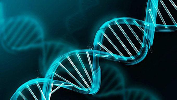 Imparten en Cuba cursos precongreso de genética comunitaria