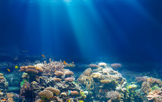 Convenio entre entidades científicas para proteger océanos