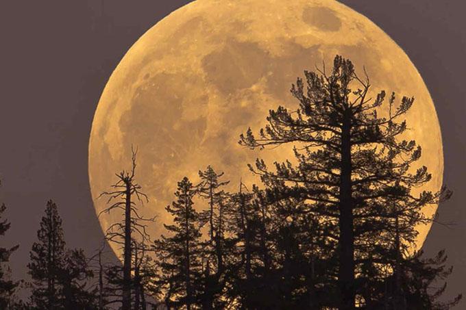 Tres superlunas se observarán entre diciembre y enero