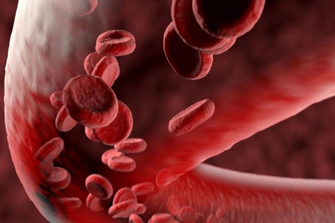 Crean nuevo y veloz método para escanear vasos sanguíneos - La Demajagua