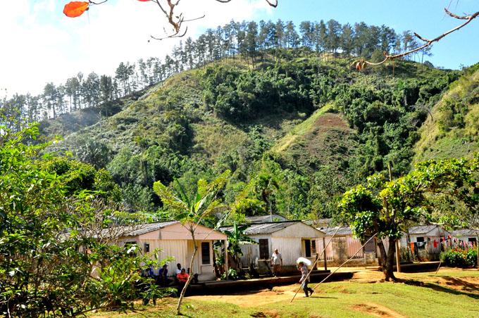Trabajar por un desarrollo forestal sostenible