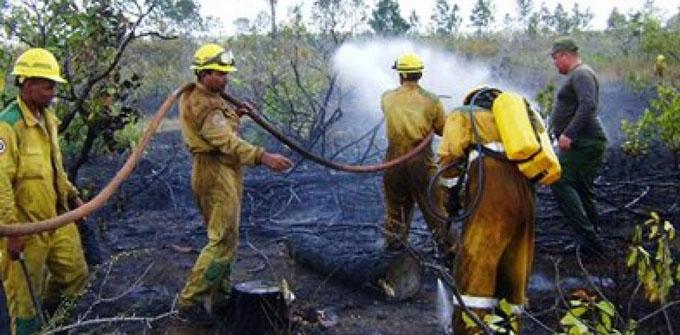 Incendio impacta en 200 hectáreas de bosques en Pinar del Río