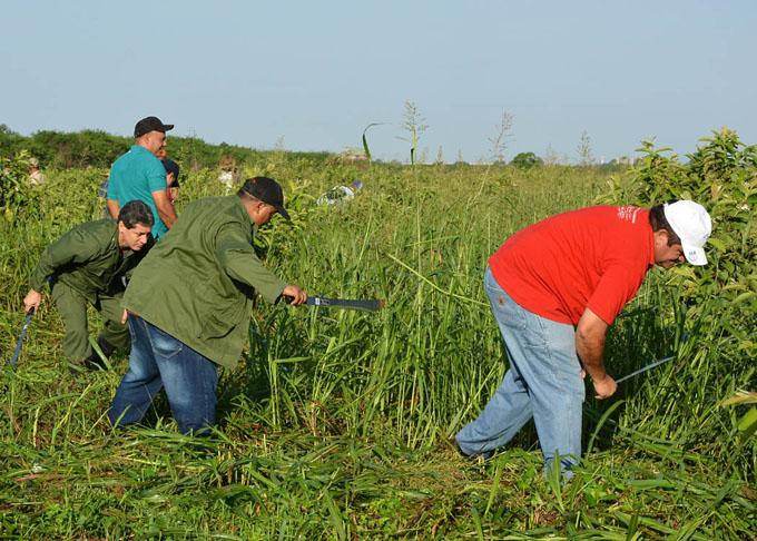 Reconocen calidad de movilizaciones a labores agrícolas
