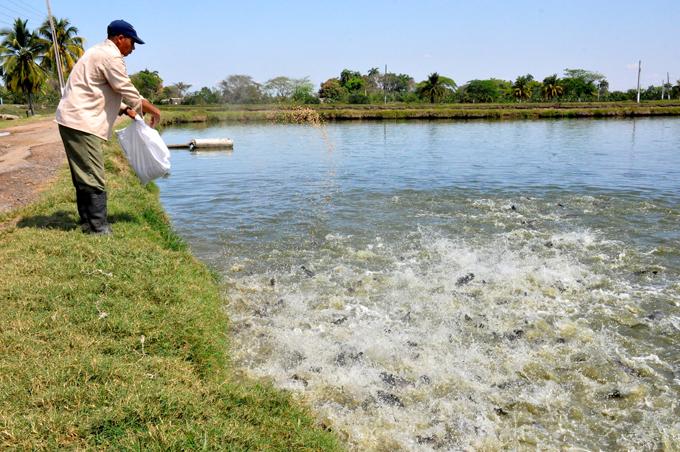 Del agua dulce a la industria