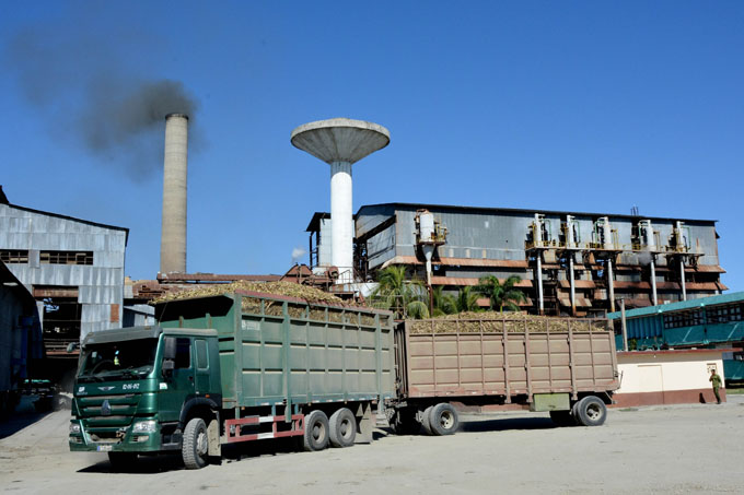 Agroindustriales ratifican compromiso en producción de azúcar en Granma