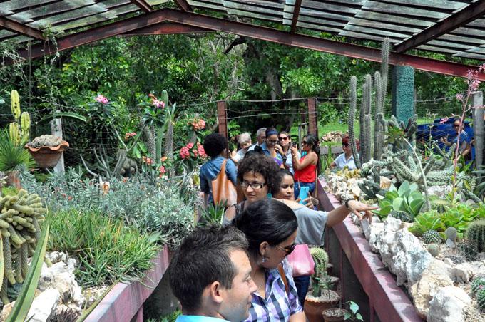 Jardín Botánico Cupaynicú: el verde que enamora (+ videos)