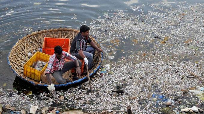 Alertan de contaminación con uranio en acuíferos de 16 estados indios