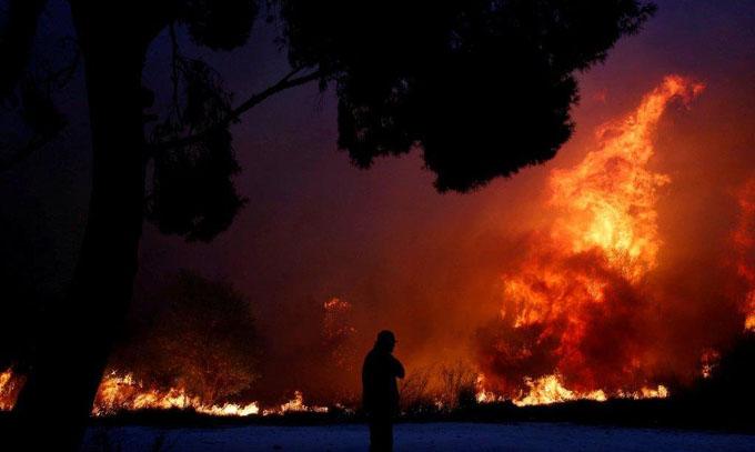 Incendios forestales en Grecia dejan más de 50 muertos (+ fotos y videos)