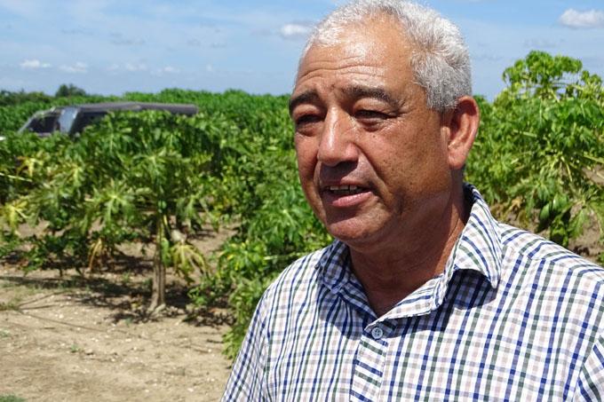 Renacer de cítricos y los frutales en polo productivo de Jiguaní