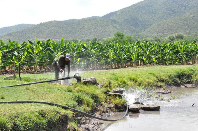 Destacan avances en  la agricultura de Pilón