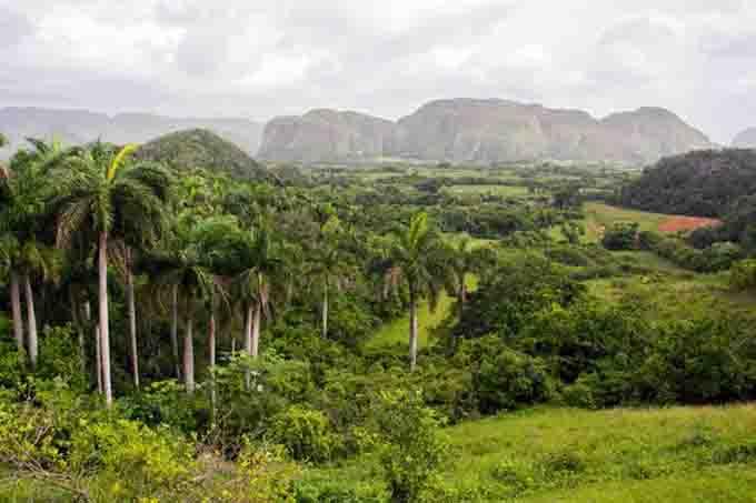 Sitios geológicos evidencian preservación ambiental en Cuba