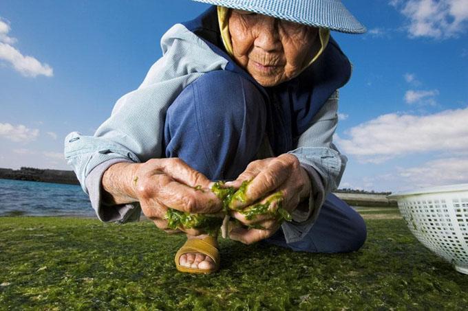 El secreto japonés para vivir 100 años y no morir en el intento