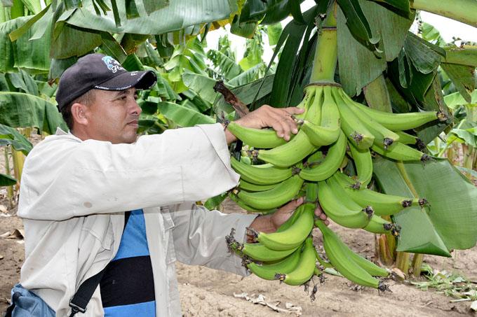 Establecerán compromisos en saludo a la Primera Ley de Reforma Agraria