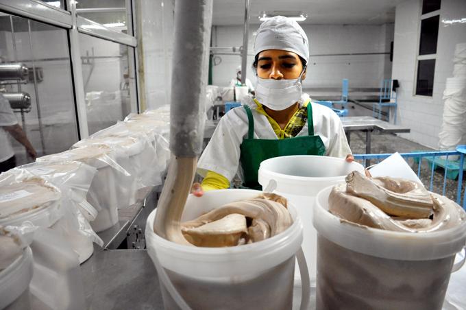 Impulso científico juvenil en la alimentaria