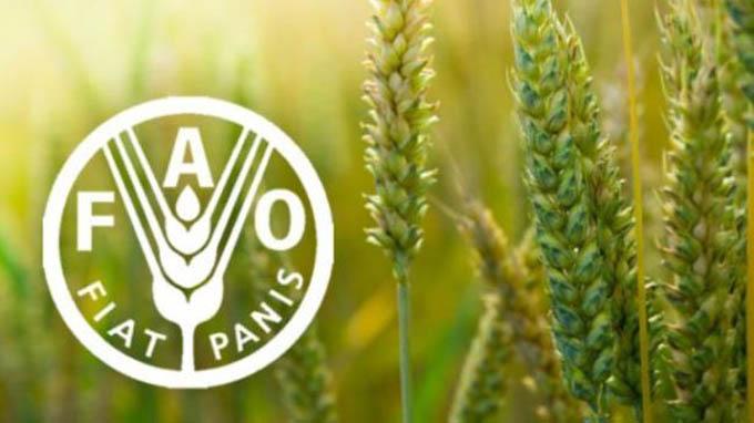 FAO presenta primer informe sobre estado de la biodiversidad