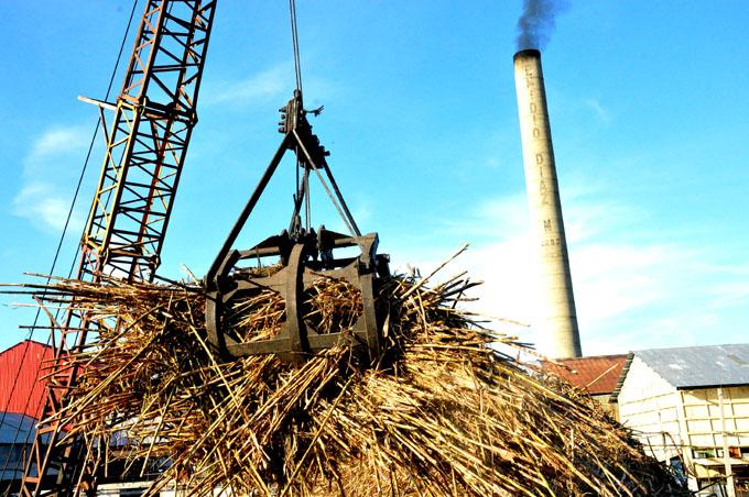 Examinan desarrollo de la industria azucarera cubana