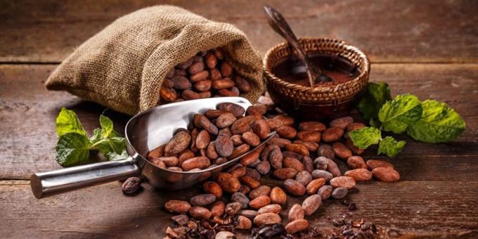 Desarrollan Cuba y Bélgica proyecto para producción de Cacao (+video)