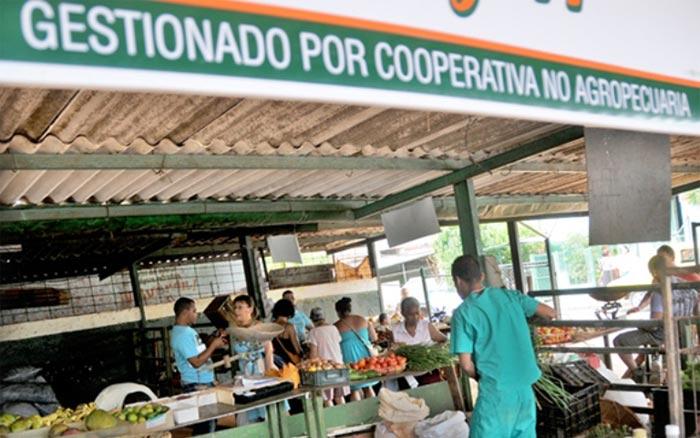 Nuevas normas para las cooperativas agropecuarias benefician su autonomía
