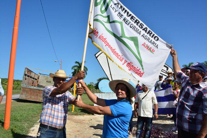 Flamea jubilosa la  bandera campesina (+ fotos)