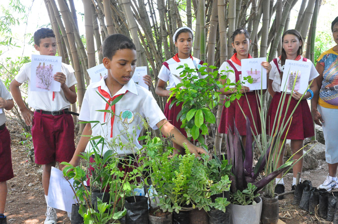 Celebran Día mundial del Medio Ambiente