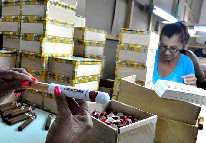 Más tabaco para la exportación se torcerá en Bayamo