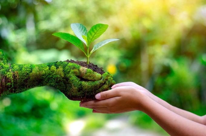 Invitan a los niños a participar en el concurso La Tierra Está Viva