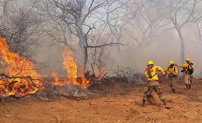 Bolivia expectante por arresto de incendiarios en Roboré