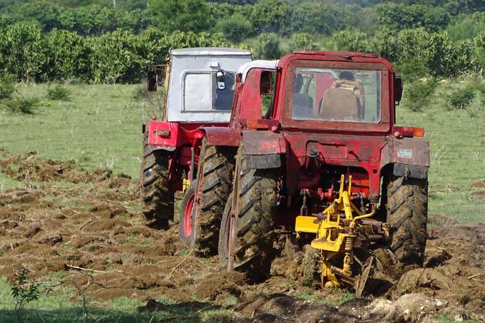 Convocan a agricultores a producir más alimentos