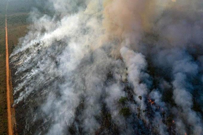 Terrorismo ambiental: la Amazonia en la mira