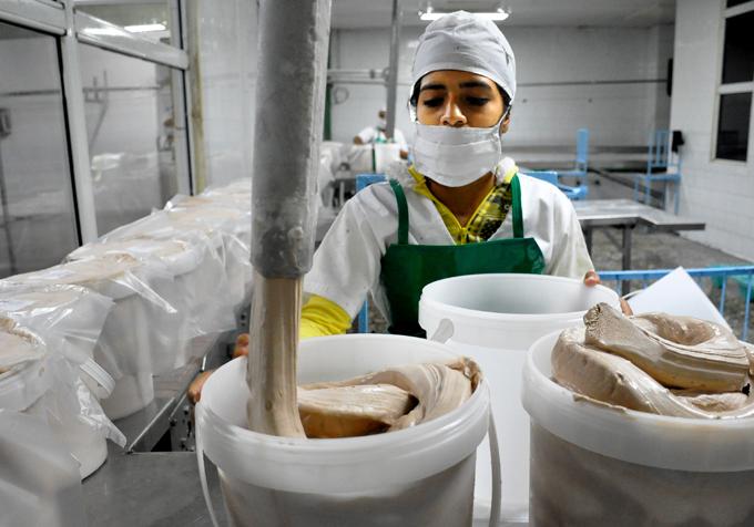 Minal de Granma mantiene activas sus fábricas