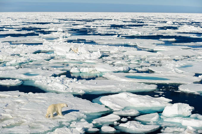 Pérdida de hielo marino ártico podría acelerar calentamiento global
