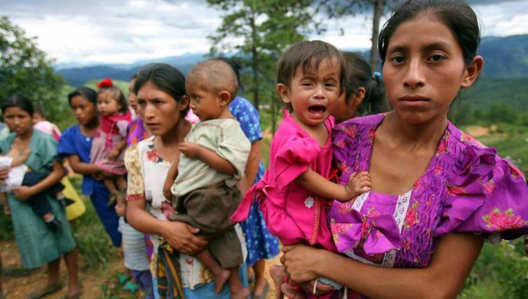 Destacan en FAO retos frente al hambre y la malnutrición (+ video)