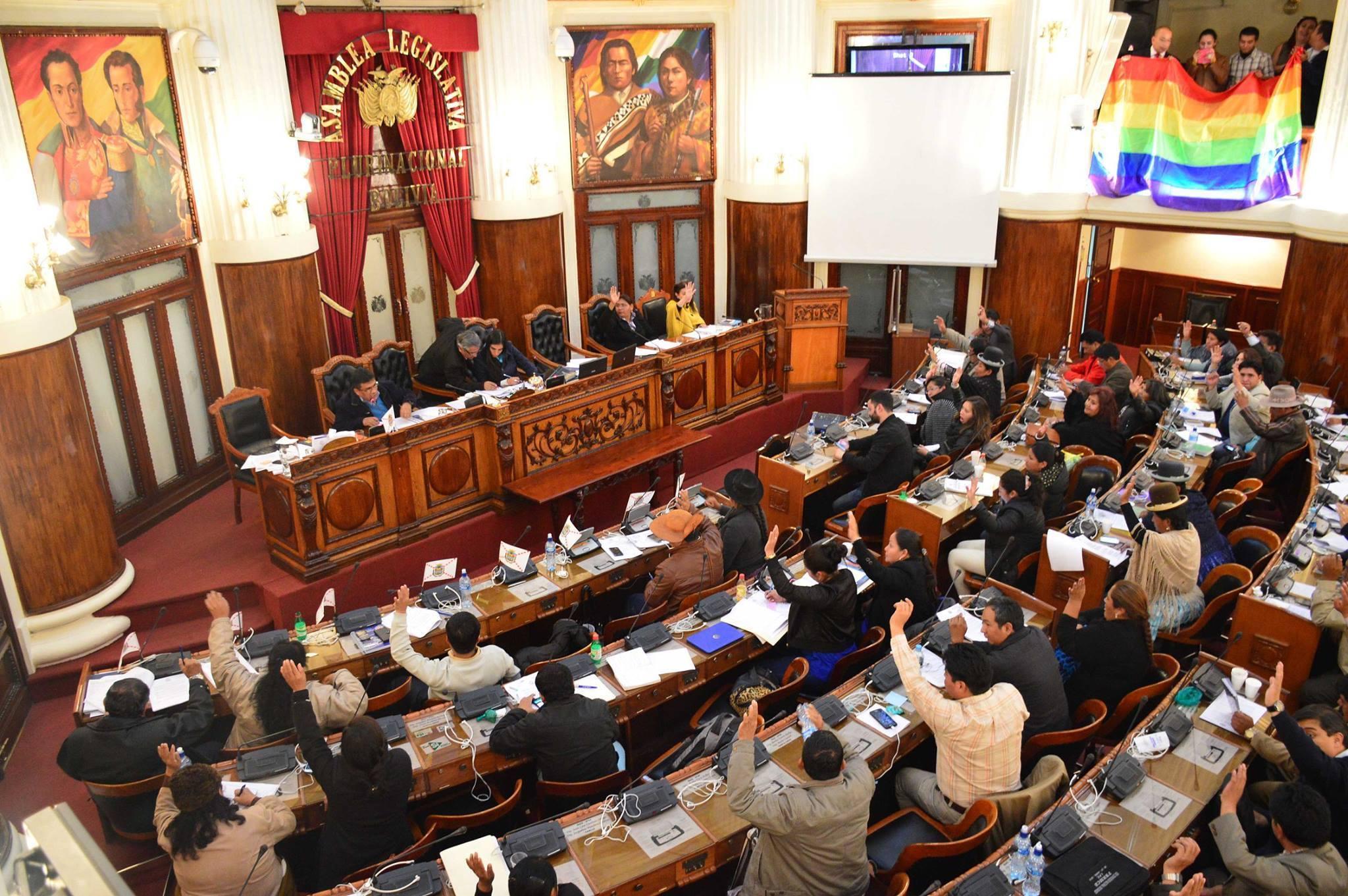 Senado de Bolivia aborda proyecto de ley para nuevas elecciones