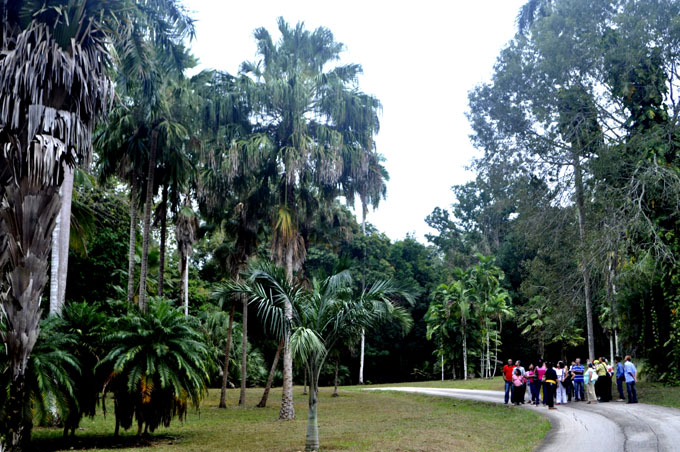 Cupaynicú acogerá reunión anual de jardines botánicos de Cuba (+fotos y video)