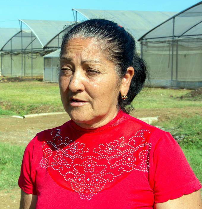 Cultivos bien protegidos y cuidados en Veguita (+ fotos y audio)