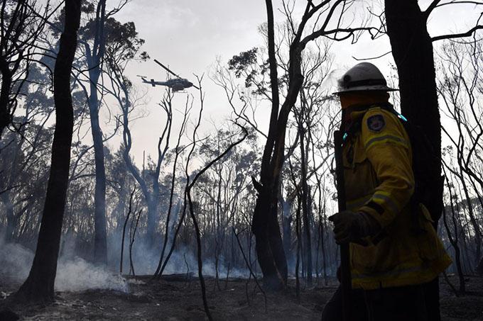 Catastróficos incendios en Australia (+ fotos y video)