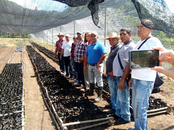 Introducen moderna tecnología en agroindustria cafetalera