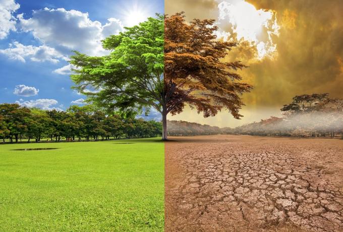 Cierra década con marcadas incidencias del cambio climático