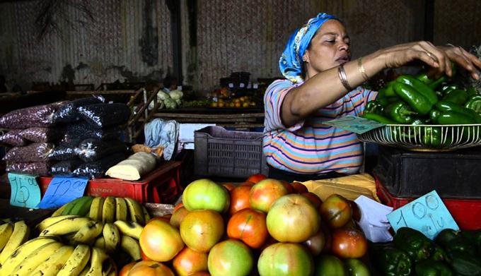 La economía cubana en 2019: entre tensiones, medidas y transformaciones (Parte I)