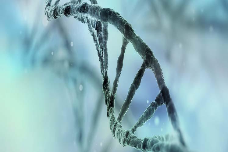 Japón planea estudiar genomas completos para prevenir el cáncer