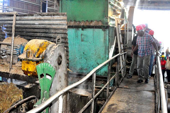 Enidio sigue a la vanguardia en la zafra azucarera
