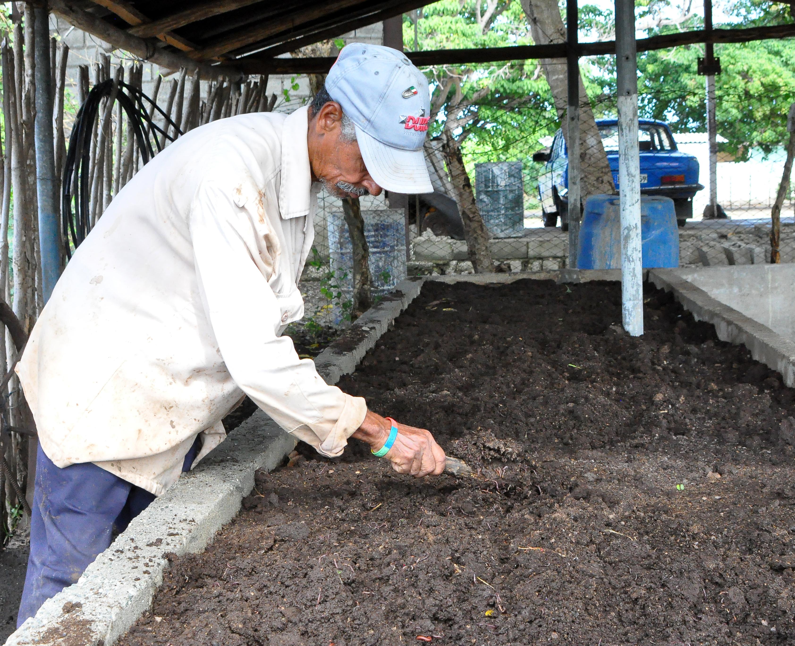 Muestra reanimación Agricultura Urbana de Campechuela (+ fotos)